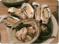 生牡蠣とナマコ