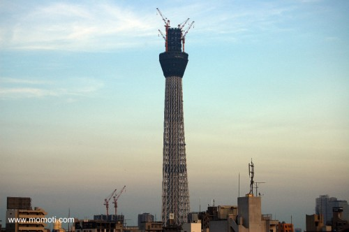 東京スカイツリー 428m