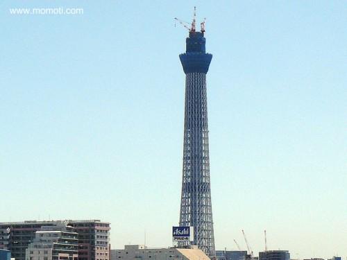白鬚橋からの東京スカイツリーは398m