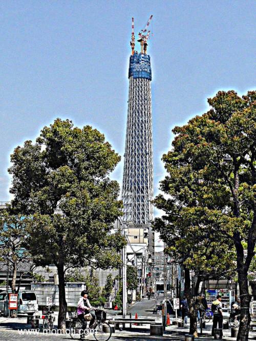 東京スカイツリー 358m