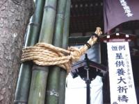 浅草寺の松飾
