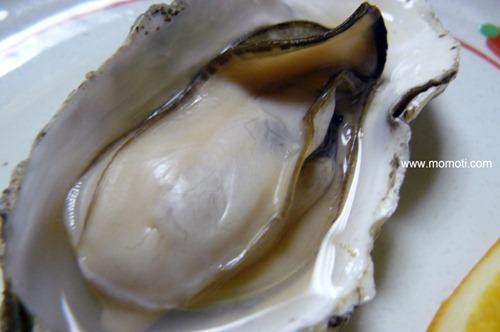 藻琴の牡蠣 2年物