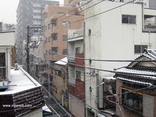 2月29日の雪