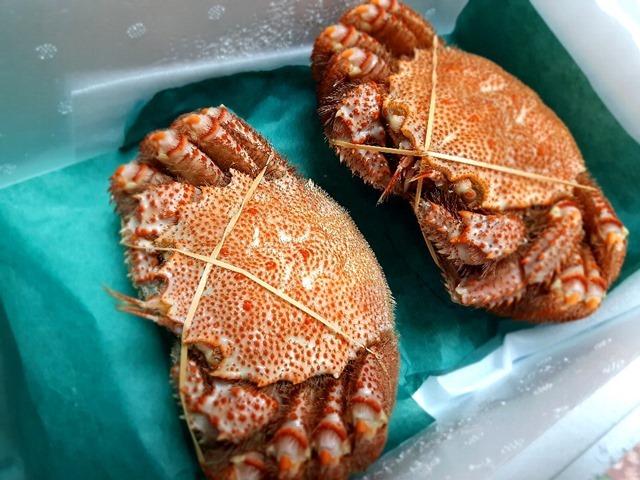 オホーツクの毛蟹