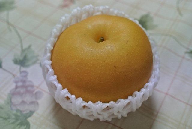 「南水」を初めて見た、そして食べてみた。(熊谷さんからの贈与:長野県飯田市)