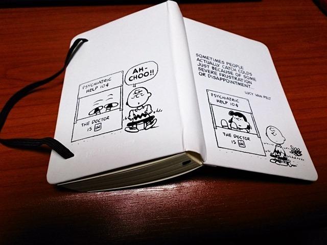 モレスキン2015年版手帳デイリーピーナッツポケット