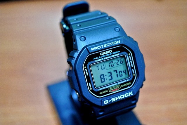 CASIO_G-SHOCK_BASIC_FIRST_TYPE_DW-5600E-1V
