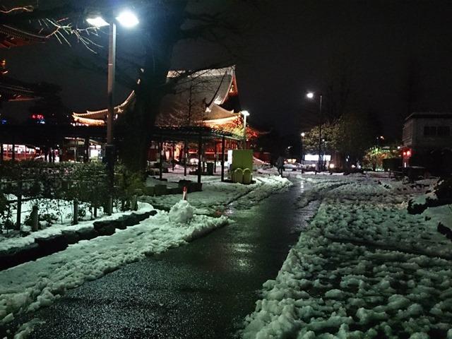 雪と雨の浅草寺