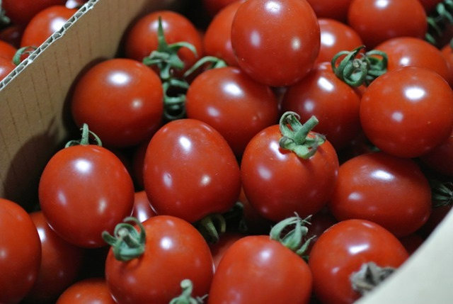 JAほこたのミニトマト